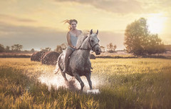 with the wind in the hair (Jagoda 1410) Tags: horse equine equinephotography equistrian womenwhitahorse womenonhorseback gallop arabianmare horseinmotion outdoor summer happiness togetherness takenwithlove meadow grassland sunset lazysunday