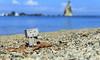 There (u_bayy) Tags: beach tanjung layar sawarna banten danboo