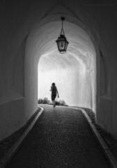 Texturas en blanco y negro (Javier Martinez de la Ossa) Tags: blackandwhite bw blancoynegro portugal sintra bn textures farol texturas paved empedrado palaciodapena dapena nikond700 nikkor2470 javiermartinezdelaossa