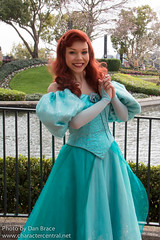 Ariel (Random)