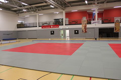 TSVE Pokal Frauen '15 (TSVE1890) Tags: judo bielefeld tsve