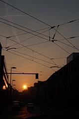 parallelism (II) (pix-4-2-day) Tags: parallelitt parallelism overhead cable oberleitung strasenbahn tram streetcar sky himmel abendhimmel evening dmmerung stadt city dusk blue blau strase street ampel lights sun sonne laterne lamp sonnenuntergang sundown pix42day