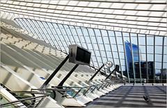 """La Tour """"Paradis"""" ou Tour des Finances de la gare es Guillemins, Lige, Belgium (claude lina) Tags: station architecture belgium belgique gare santiagocalatrava lige wallonie provincedelige tourdesfinanceslige garedesguilleminslige tourparadis"""