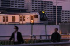 DS7_7422.jpg (d3_plus) Tags: street sunset bicycle japan train cycling spring twilight nikon scenery nightshot outdoor dusk fine jr   streetphoto nightview nikkor  panning    thesedays 80200mm 80200 pottering    fineday      8020028 80200mmf28d 80200mmf28 panningshot yokosukaline   80200mmf28af    d700  nikond700  afzoomnikkor80200mmf28 afzoomnikkor80200mmf28s aiafzoomnikkor80200mmf28s aiafzoomnikkor80200mmf28sed