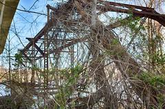 Old Bridge on Belle Isle