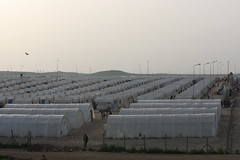 Sharya Refugee Camp TR_08672 (Thomas Rossi Rassloff) Tags: camp army leiden arms military refugee iraq bad tent zelt armee irak suffer brüder wohnen allianz waffen leid schlecht schrecklich gemeinschaft miliz furchtbar hausen kurdisch brotzer sharya verbündete peschmerga dwekh nawsha
