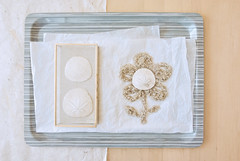 Rich (Carrie McGann) Tags: glass paper interesting sand nikon tray sanddollars glassbox kimklassen 041715 thestudioonline thestudio|online