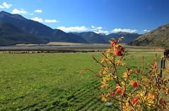 Green & Blue (Tones Corner) Tags: canon landscape arthurspass nzscene ruralnz nzscenery nzbeauty