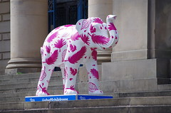 Herd of Sheffield elephant sculptures (31) (Simon Dell Photography) Tags: herdofsheffield herdof sheffield herd eliphants statues town city sculptures colorfull awsome 2016 trail see find them locations