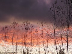 Sunset (moschettiphotography) Tags: outdoor sunset sky color orange purple clouds nikon amateur monochrome black white landscape ny london beach uruguay trees nature samsung sony love art heaven