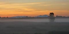 Ground Fog (vtpeacenik) Tags: landscape sunrise fog fields july vermont