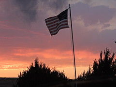 Patriot (Jwest09) Tags: flowers blue sunset red sky orange white abstract black colour skyline clouds composition fun photo bush post flag country like flags follow pole shade cluds followme likeme