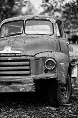 on a clear day (keith midson) Tags: newnorfolk tasmania truck vehicle old decay vintage transport sigma 85mm