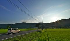 country road (tyodai) Tags: japan shiga   summer   yogo     7 ilce7 super wideheliar 15mm f45 aspherical iii