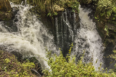 Circuito Inferior (Gustavo Occelli) Tags: agua argentina cascadas cataratas iguaz naturaleza