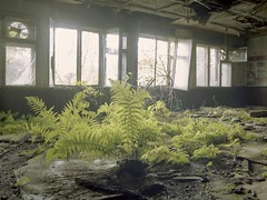 Meeting room (soho42) Tags: green abandoned film decay urbanexploration meetingroom chemicalplant urbex mamiya645protl kodakportapro160