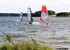 IMG_0785 (lesleydoubleday) Tags: rutland rutlandwater windsurfers
