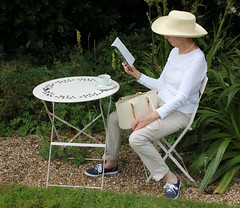 8 Visitor and Red Admiral (on table), Old Bladbean Stud Gardens, August 2016 (Jim_Higham) Tags: ngs open garden scheme yellow book bladbean near canterbury flowers plants shrubbery vegetables obelisks purple spiky walled carol bruce