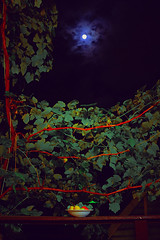South still life in the night (allejandrine) Tags: sky moon nature fruits night south stillife
