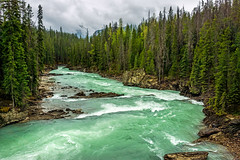 kicking horse river in yoho NP - BC, canada 3 (Russell Scott Images) Tags: canada britishcolumbia bc canadianrockymountains yohonationalpark kickinghorseriver
