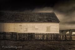 Pierce Ranch (Laura Macky) Tags: pointreyes tamalesbay farm ranch dairy architecture abandoned california textures barn