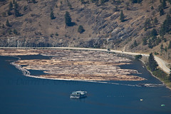 Log Booms, an Elevated View 3 (LongInt57) Tags: water lake logs booms boat floating logging industry wood lumber road mountain trees forest blue brown green landscape kelowna bc canada okanagan