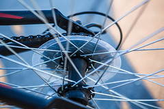 Spokes (Evan's Life Through The Lens) Tags: camera 5d mark mk three 3 iii lens glass zoom wide telephoto 2470mm f28 vibrant color blue green orange ocean water outdoors outside bike escape cold autumn 2016 femur recovery alone