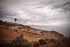 BEFORE THE HAIL | PACHATATA | ISLA AMANTANI | LAGO TITICACA ~ 3812 m | PUNO | PER | 2016 (Leo210321) Tags: instagramapp square squareformat iphoneography uploaded:by=instagram latergram maldiperu memoriesofperu peruviandays islaamantani lagotiticaca titicaca igpuno igerspuno ande per peru latinoamerican people