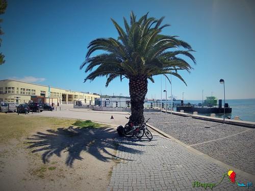 TravessiaBTT_Leiria-Sagres_5Dia_023