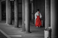 Miko (meblogoo) Tags: japan sapporo hokkaido miko 巫女 α7 北海道神宮 fe55 sel55f18z