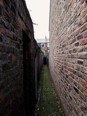 between Scylla and Charybdis (vfrgk) Tags: architecture backalley perspective mold moisture claustrophobic brickhouse claustrophobia narrowpassage scyllaandcharybdis brickwalldetail
