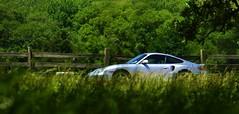 Bug eyes view (jbspeed996) Tags: summer sun flower tree green grass spring 911 turbo porsche sliver artic 996