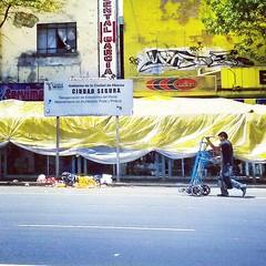 Ciudad segura, mejoramiento en alumbrado, poda y pintura... (Greitas) Tags: square squareformat hudson iphoneography instagramapp uploaded:by=instagram