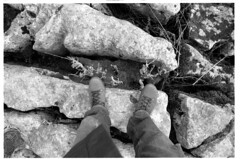 Limestone Pavements (chiscocks) Tags: blackandwhite film 35mm olympus zuiko om1 fomapan