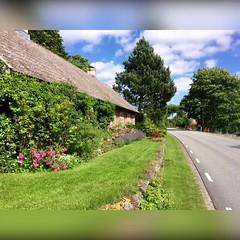 Veckans bildsvep denna #underbart #vackra Julivecka i #Sverige (svenskvagguide) Tags: underbart vackra sverige