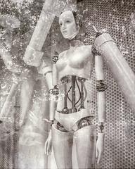 The New Garden of Eden (Steve Mitchell Gallery) Tags: eve mannequin female robot women gardenofeden robots creation manikan newgardenofeden