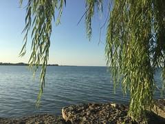 Biking by the lake (Dallas K. Sanders) Tags: blue lake cycling stcatharines ontario bike