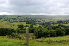 View from Brow Moor Edge (Walruscharmer) Tags: brontcountry foxglove digitalis woodenpost panoramicview valley haworth westyorkshire yorkshire england