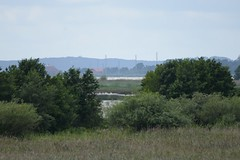 DSC_0517 (sauliusjulius) Tags: rusns sala nemuno delta the neman river landkreis heydekrug memelland