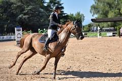 DSC_0932 (2) (ploufjf_64) Tags: paus show jumping chevaux pau 2016