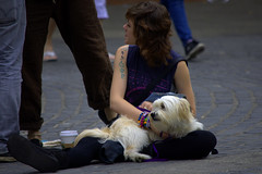 Break Time (swong95765) Tags: woman female lady seated resting street dog animal pet break cobblestone coffee tattoo