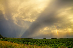 Farmers Weather Optics (Striking Photography by Bo Insogna) Tags: light sky west nature sunshine rain weather landscapes view farmers farming scenic sunny views farms rainbows agriculture raining optic coloradolandscapes coloradonaturephotography insogna coloradoweather