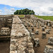 20160714-IMG_6490 Housesteads Roman Garrison Fort Hadrians Wall Northumberland.jpg