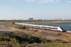 Train 6206 vient de passer Port-la-Nouvelle (Trains-En-Voyage) Tags: sncf portlanouvelle tgv