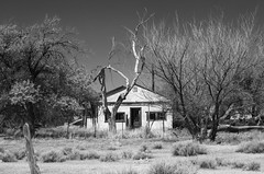 Toonerville (No Trolley) (unknown quantity) Tags: deadtrees abandonedhouse monochrome shadows weathered opendoor fence desolate brush blackandwhite derelict unpaintedwood fadedpaint infrared sky