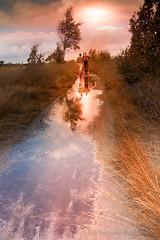 Hiking in nature. (rudi.verschoren) Tags: color park nature walk hiking water sky sun flair belgium antwerp kalmhout ngc
