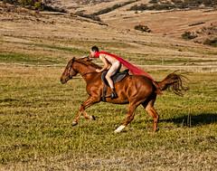 Naked Horsey Guy (landbergmary) Tags: marylandberg conceptualphotography conceptualportrait portrait brave courageous puttingitoutthere uninhibited fearless nakedmanonhorse horsebackriding horse redtule nudephotography