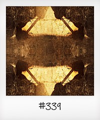 """#DailyPolaroid of 1-9-16 #339 • <a style=""""font-size:0.8em;"""" href=""""http://www.flickr.com/photos/47939785@N05/30012561866/"""" target=""""_blank"""">View on Flickr</a>"""