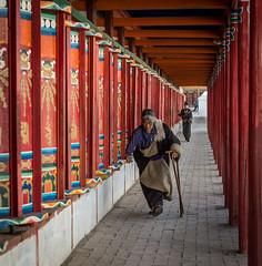 20190226-Repkong St-3475.jpg (Ding Zhou) Tags: china portrait flickr streetlife streetfood qinghai tongren repkong tibetnewyear tibetminorities huangnanxian tibetclothing