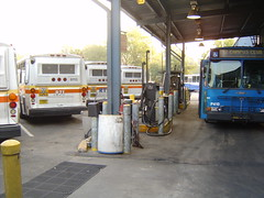 Gainesville Regional Transit System (Guayabal) Tags: bus gainesville system transit orion regional flxible universit